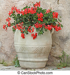 vintage flowerpot - vintage terracotta flowerpot with red...