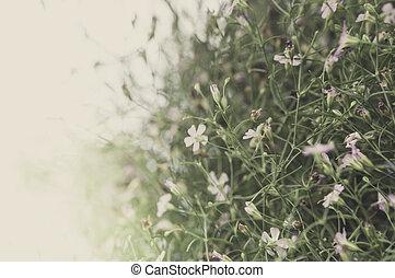 Vintage Flowers In warm tones