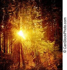 vintage forest landscape