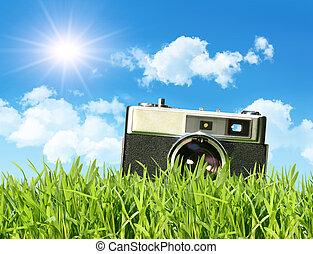 vintage fototoestel, gras, groot