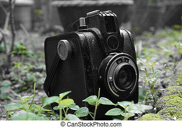 Vintage Gevabox Gevaert Camera