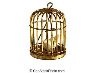 Vintage golden birdcage