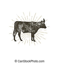 Vintage hand drawn cow icon. Farm animal silhouette shape. Retro black style cow with sunbursts, isolated on white background. Vector Illustration