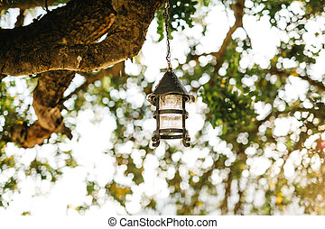 Vintage hanging street lamp on a tree branch against a background of leaves.