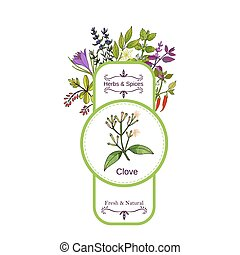 Vintage herbs and spices label collection. Clove