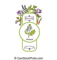 Vintage herbs and spices label collection. Mustard