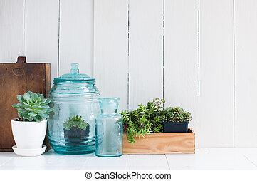 Vintage home decor: houseplants, green succulents, old...