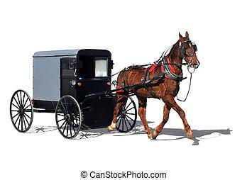 Vintage horse-drawn buggy