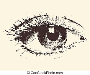 Vintage illustration of an eye hand drawn, sketch