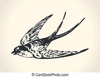 Vintage illustration of swallow - Vintage vector...