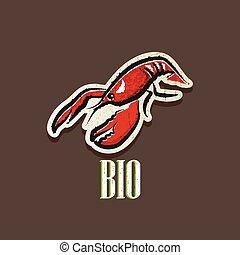 vintage illustration with a lobster