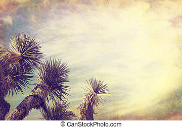 A Joshua tree in California's Mojave desert. Image is done in a retro, vintage style with cross-processed colors and grunge paper textures.
