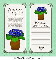 Vintage label template with decorative primrose plant in pot, vector illustration