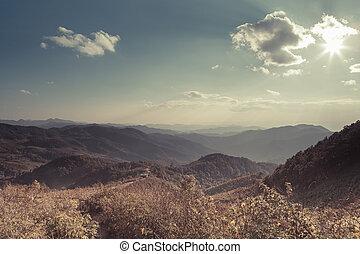 vintage landscape