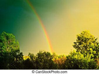 Vintage Landscape With Rainbow