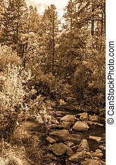 Vintage look pictures of Jemez River in New Mexico