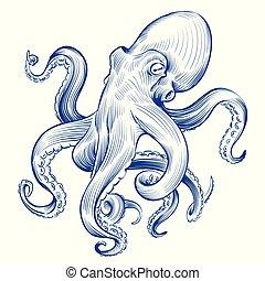 Vintage octopus. Hand drawn squid engraved ocean animal. ...