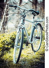 Vintage old bicycle in field.
