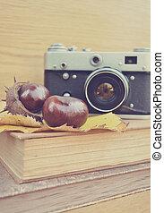 Vintage old camera and fresh chestnut