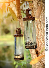 Vintage old glass lamps on the tree.