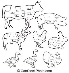 Vintage outline diagram meal cutting of domestic animals -...