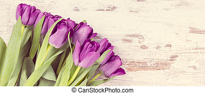 Vintage photo, Bouquet of purple tulips for different occasions on white boards