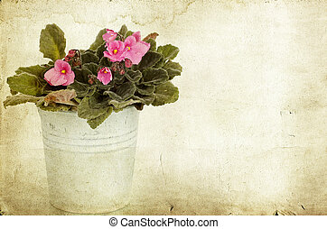 Vintage photo of flowers in a bucket