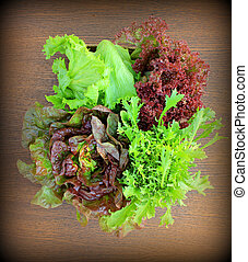 Green and red lettuce (iceberg, mizuna, lactuca sativa, lollo rosa) on a table