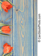 Vintage photo, Red tulips for birthday or other celebration on blue boards, copy space for text