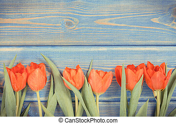 Vintage photo, Red tulips for different occasions on blue boards, copy space for text