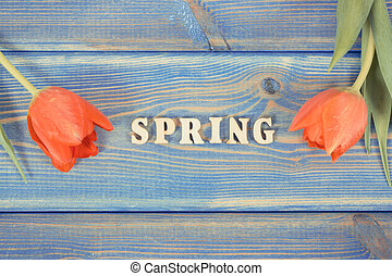 Vintage photo, Word spring with fresh tulips on blue boards