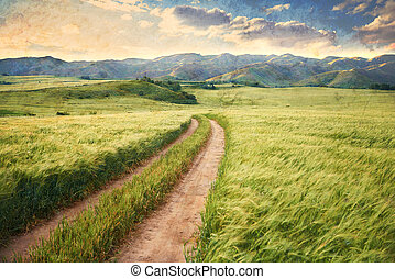 Vintage picture of the road in a barley field.