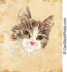 vintage portrait of the cat