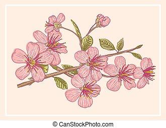 Vintage postcard with sakura.