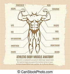 Vintage poster with athletic body infographics