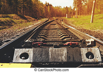 Vintage railroad truck in forest