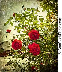 Vintage red roses on grunge background