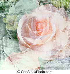 Vintage rose flower painted on wall background