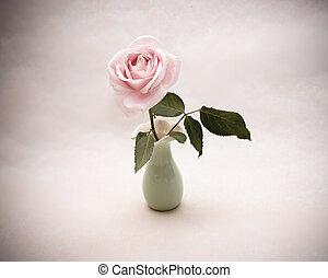 Vintage rose in a vase