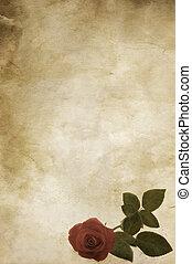 vintage rose - old  grunge paper texture with flower