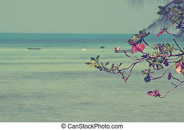 Vintage Sea almond leaves over sea background, filterd image