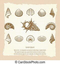Vintage sea shell silhouettes set