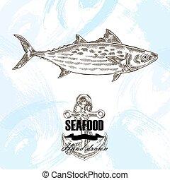 Vintage seafood sketch background. Hand drawn bonito fish vector illustration.