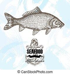 Vintage seafood sketch background. Hand drawn carp fish vector illustration.