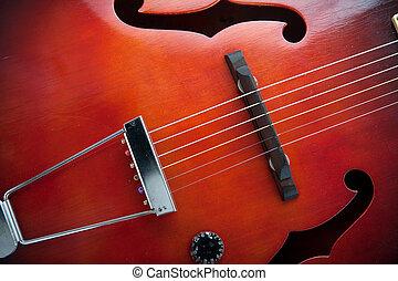 Vintage semi acoustic guitar