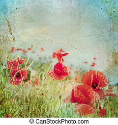 Vintage shabby chic background with red poppy