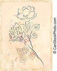 vintage sketch