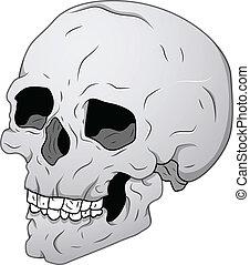 Vintage Skull Illustration