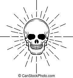Vintage skull label, emblem and logo