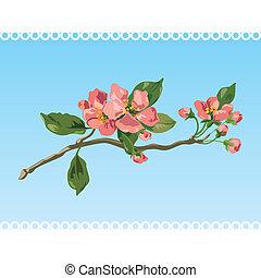 Vintage spring blossom. Vector